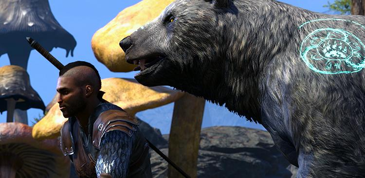 Warden Show His Nature-Based Abilities In ESO Gameplay Trailer